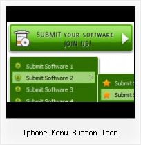 Software Button Depressed State Professional Web Bttons