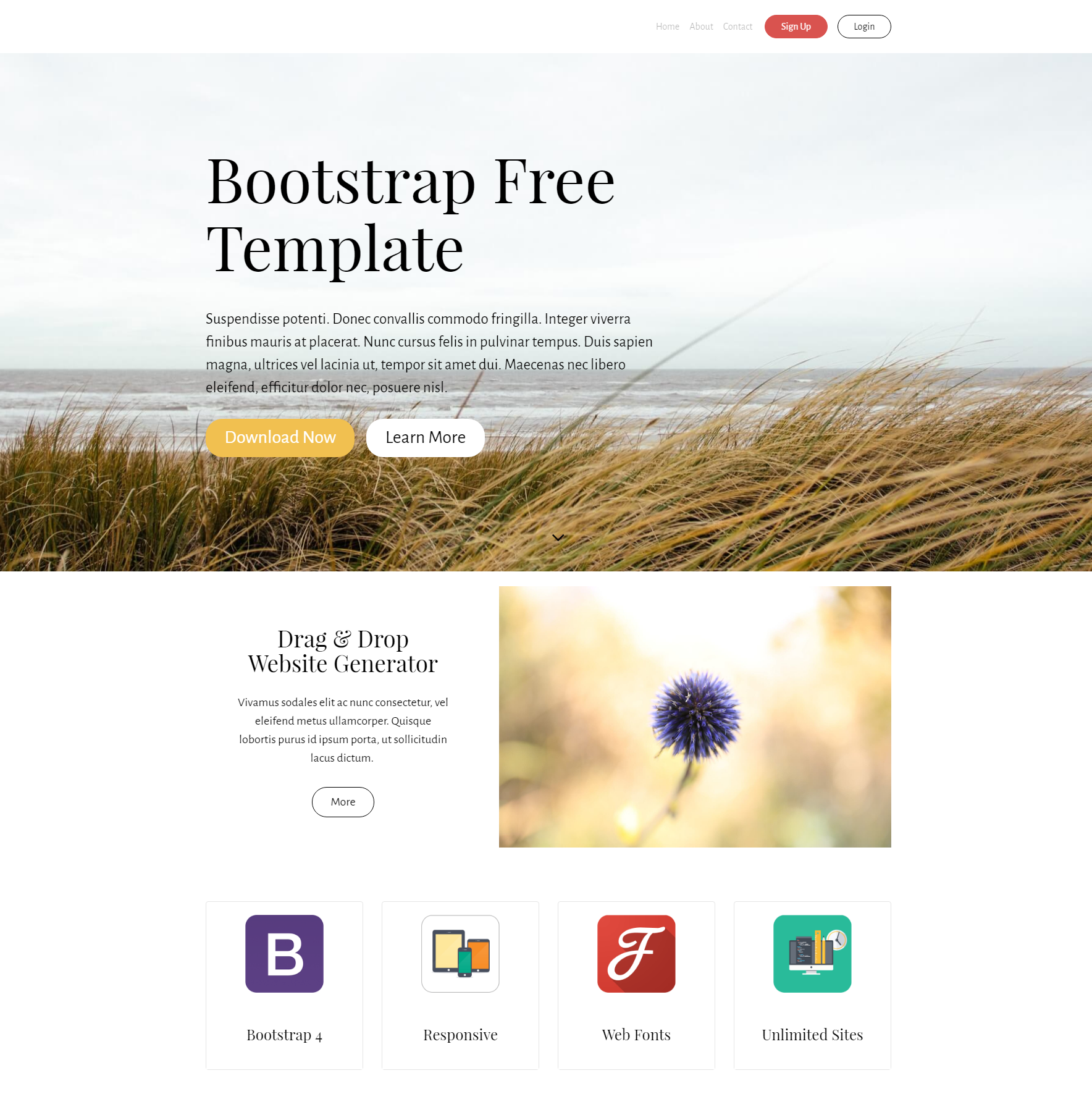 HTML Bootstrap Free Templates